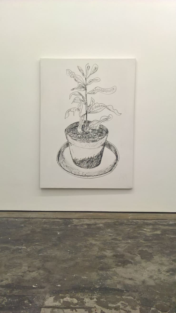 Andrew Maughan, Plant, 2013