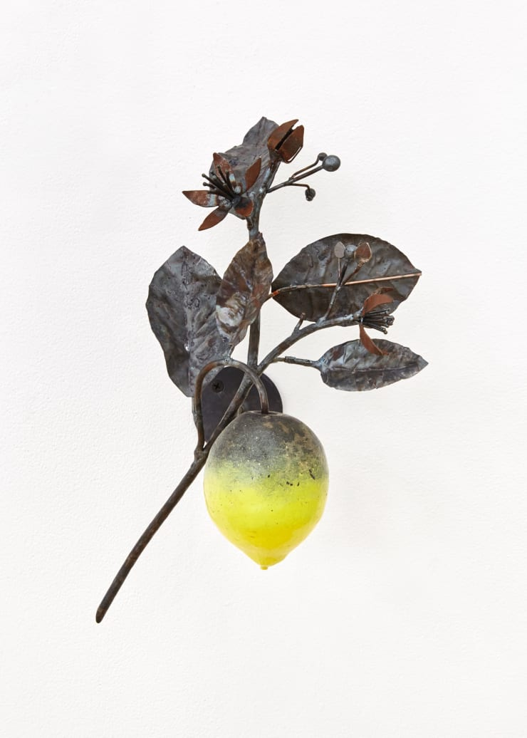 Rob Branigan, Citrus Limon (After A. Pfeiffer), 2019