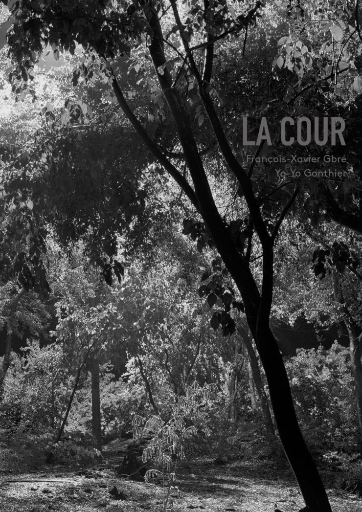 François-Xavier Gbré & Yo-Yo Gonthier - La Cour