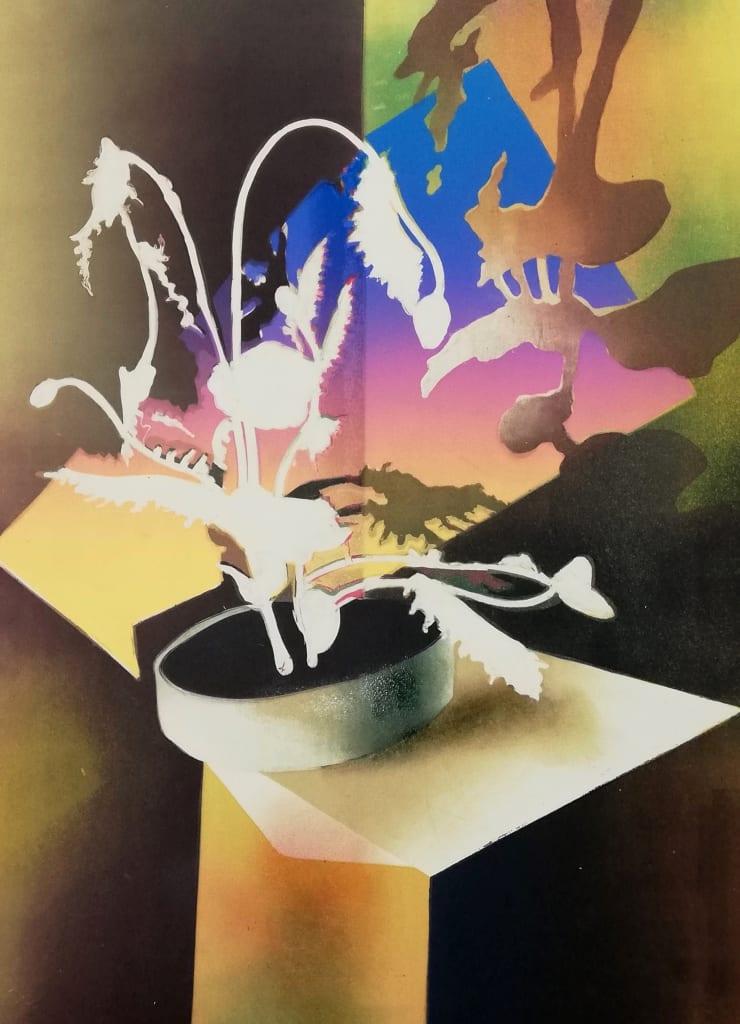 Sophie Layton Still Life - Poppy (Negative), 2019