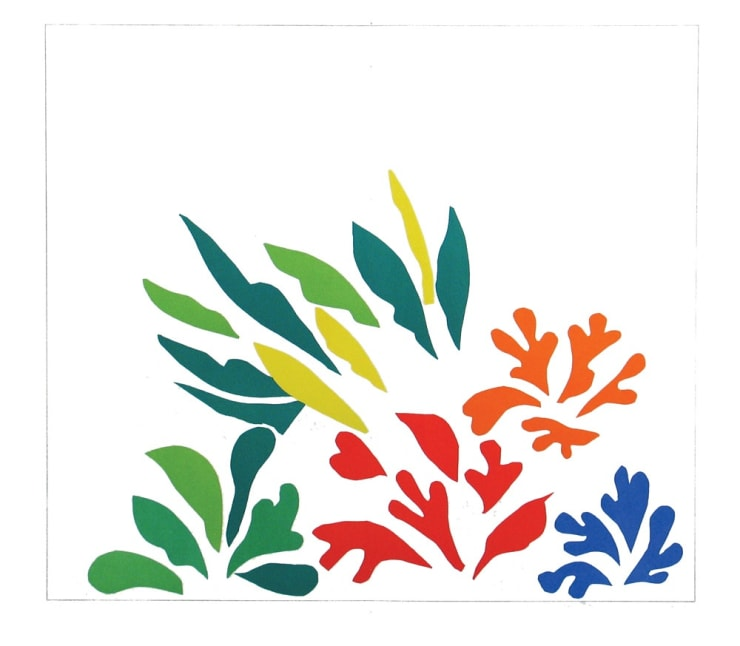 Henri Matisse Acanthes, 1954