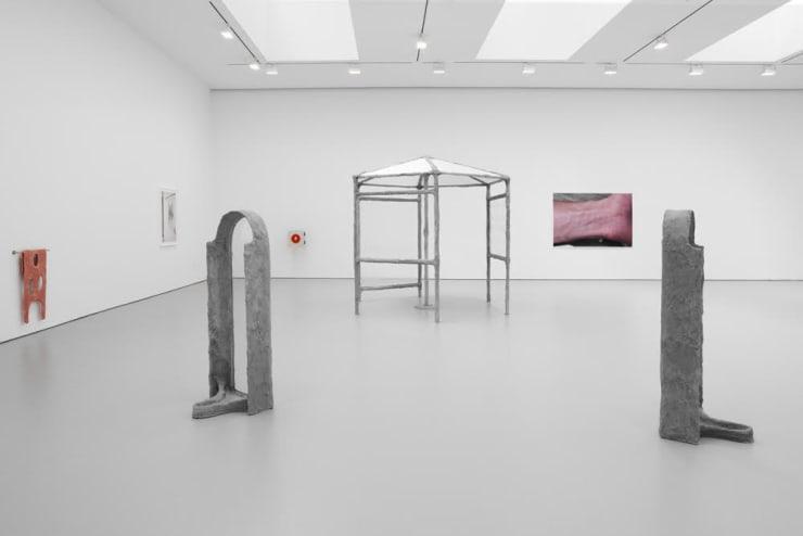 Oren Pinhassi at David Zwirner