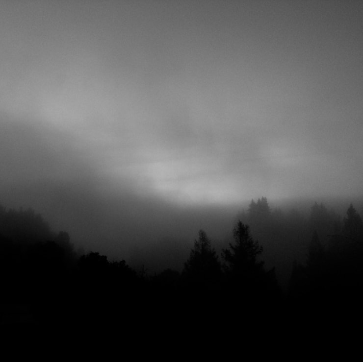 ", arial, helvetica; font-size: 11px; line-height: 14px;"">Miya Ando Fog - hwy 280, 2014"