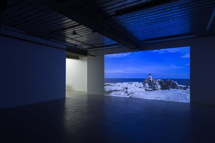 Marcus Coates The Last of Its Kind, 2018 (Installation view) 9th February - 14th April, 2018 Workplace London