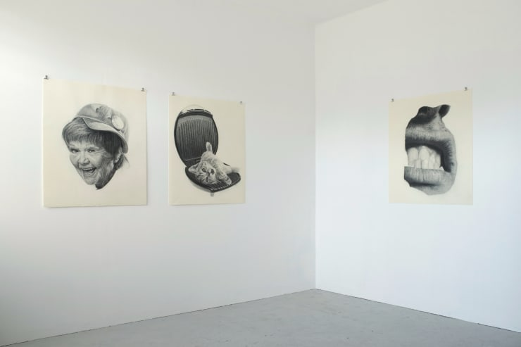 Henry Coombes, Magic Towards Your Face - 3 Drawings, 2010, Inkjet prints