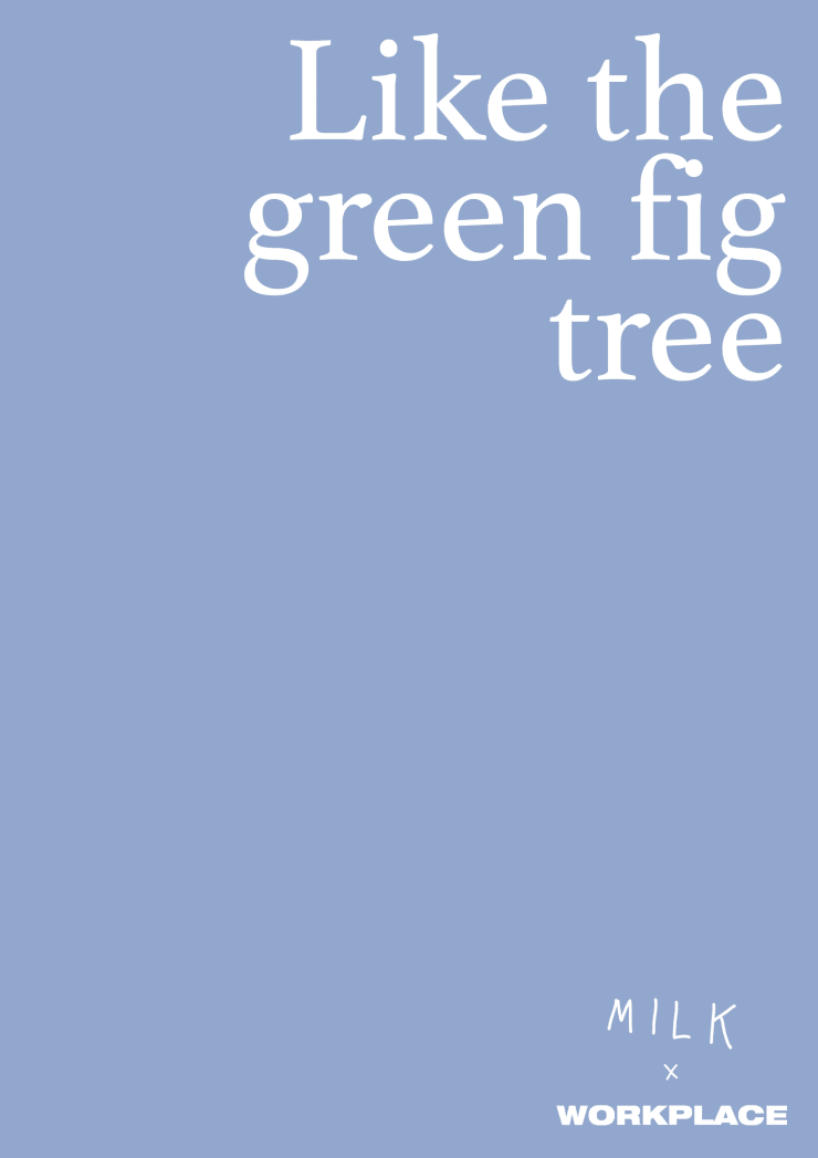 Like The Green Fig Tree