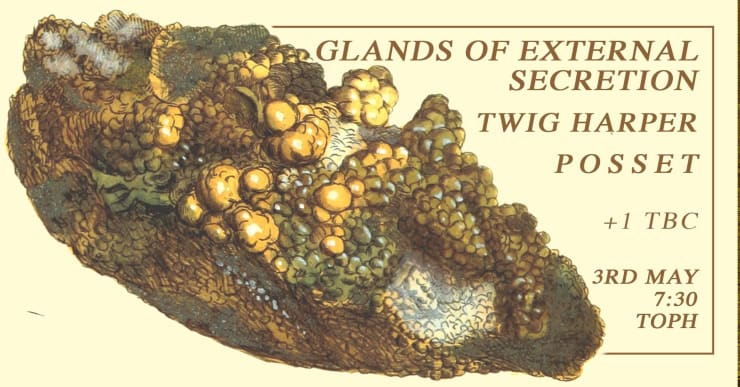 Glands Of External Secretion // Twig Harper // Posset