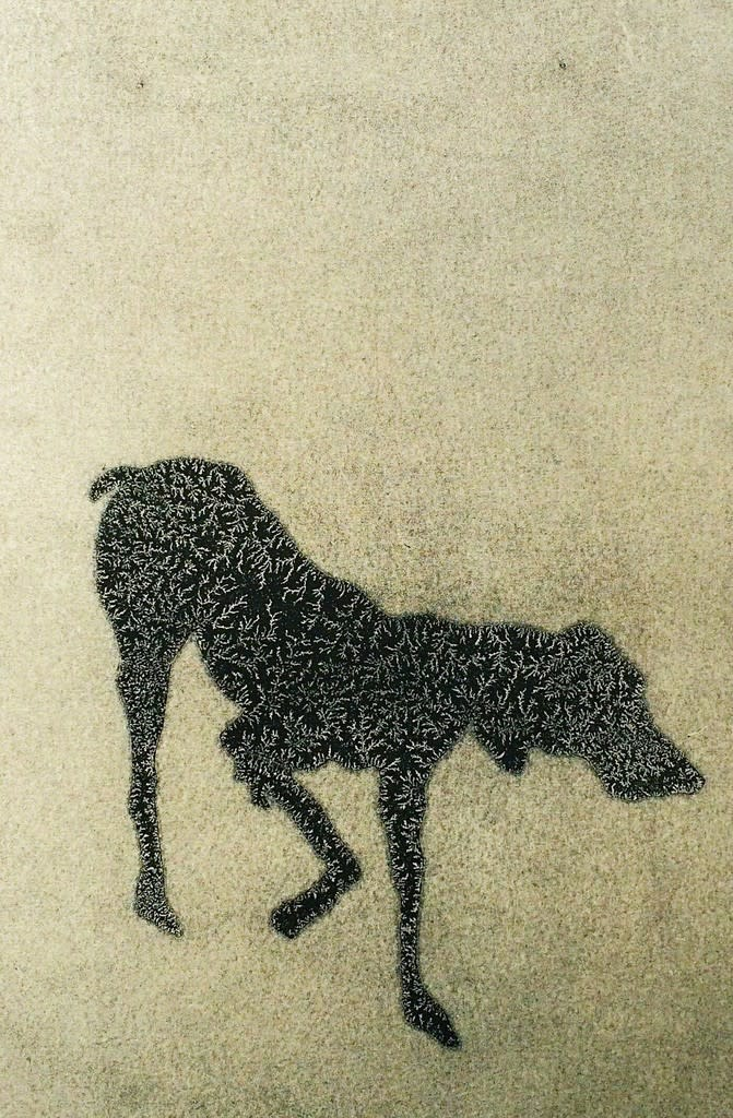 Shelly Tregoning  Hound, 2017  drawing on paper  12 1/5 × 9 1/10 in31 × 23 cm