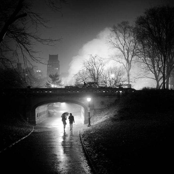 PHIL PENMAN, Central Park, 2018