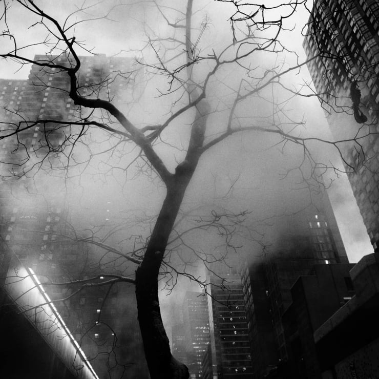 PHIL PENMAN, 42nd Street Project, Steam Tree New York, 2017
