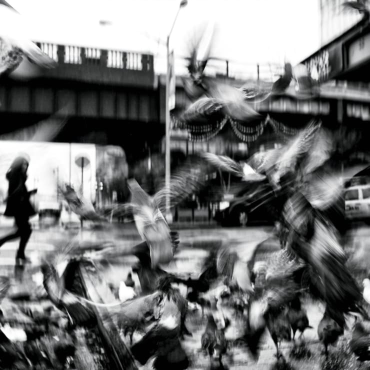 Leica Gallery New York