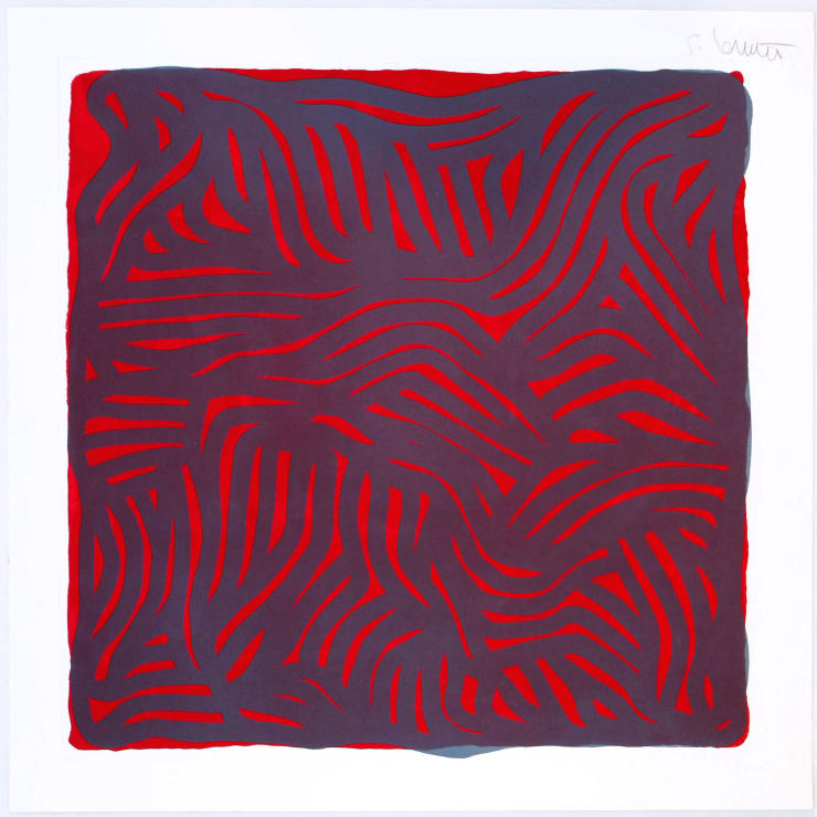 Parallel Curves (Red)