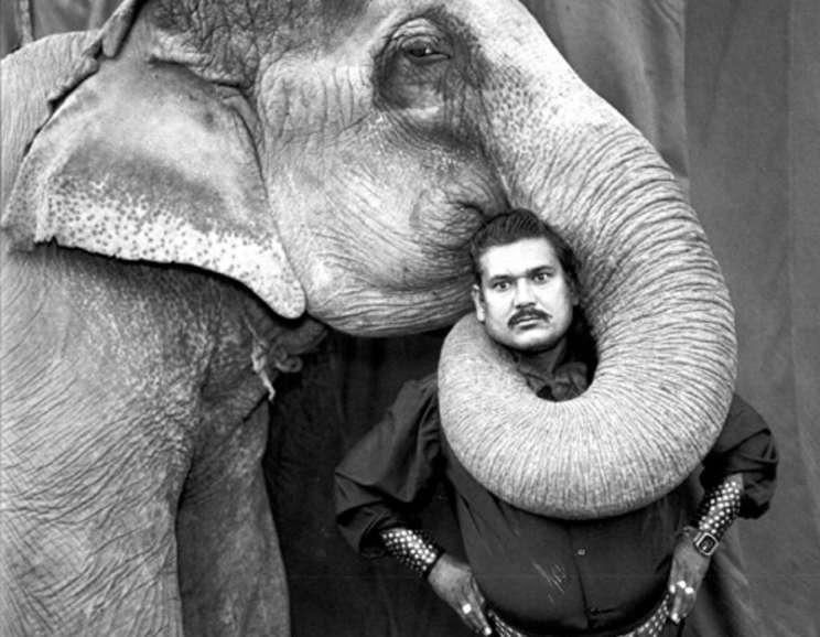 Mary Ellen Mark - Ram Prakash Singh with His Elephant Shyama, Great Golden Circus, Ahmedabad, India