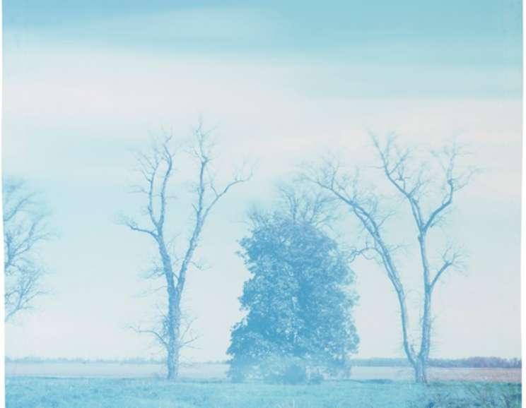 John Chiara - Farrell-Eagles Nest: Clover Hill