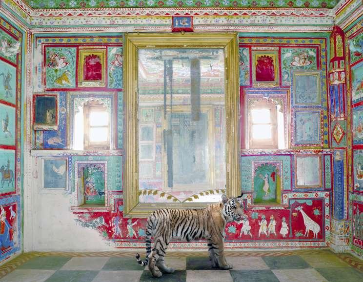 Karen Knorr - Durga's Mount, Junha Mahal, Dungarpur