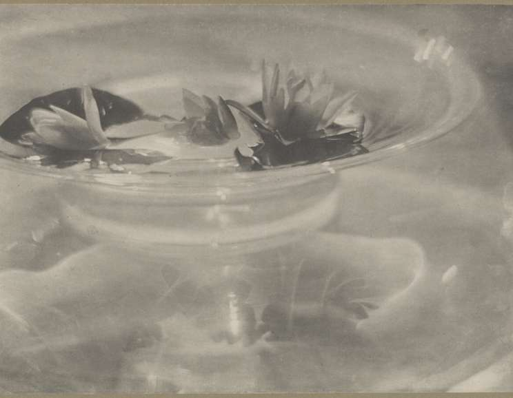 Baron Adolph de Meyer - Glass Bowl with Water Lilies