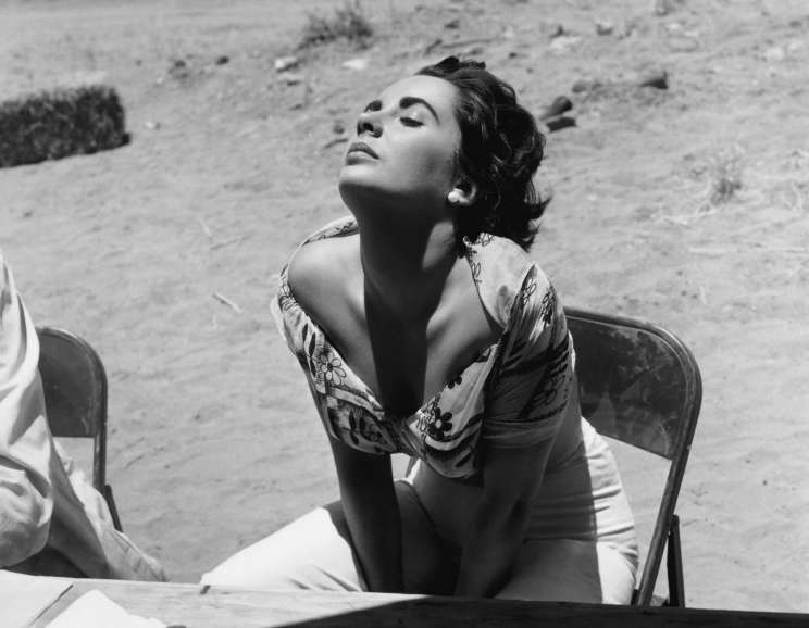 Sid Avery - Liz Taylor Sunning Herself