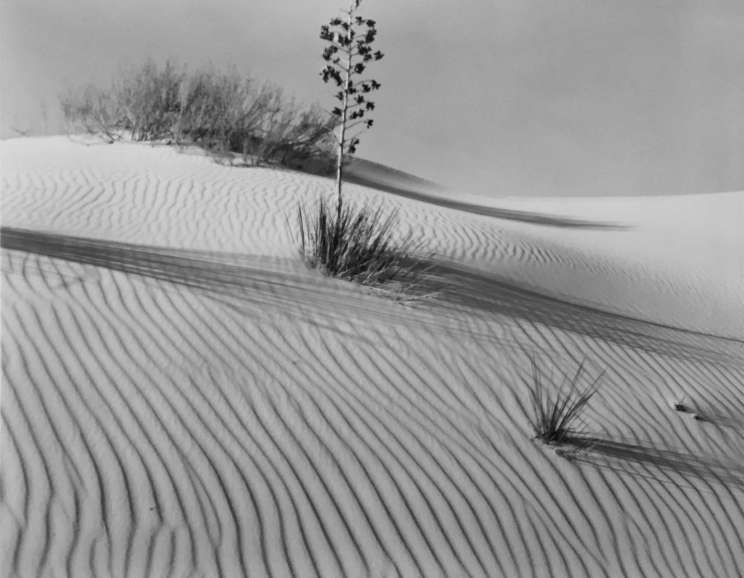 Brett Weston - White Sands