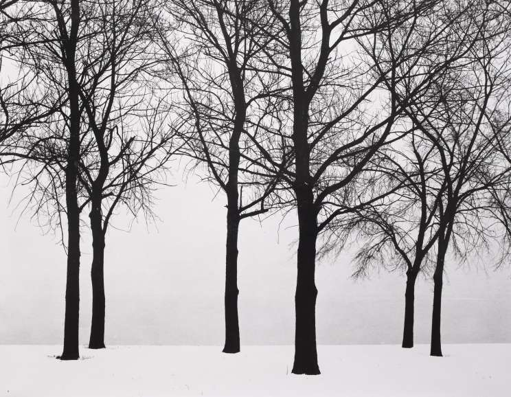 Harry Callahan - Eleanor, Chicago