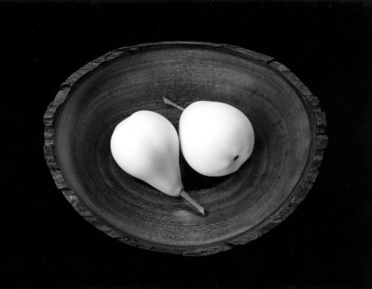 Paul Caponigro - Two Pears, ME