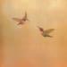 Carolyn Reynolds, Three Hummingbirds in Golden Summer, 2019