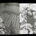 Florentijn de Boer, Boek Phantomride