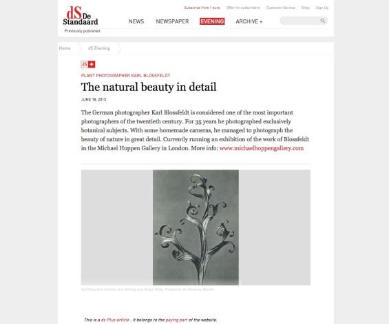 Karl Blossfeldt: The natural beauty in detail