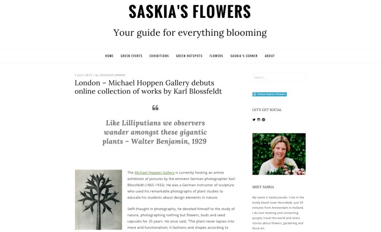 London – Michael Hoppen Gallery debuts online collection of works by Karl Blossfeldt