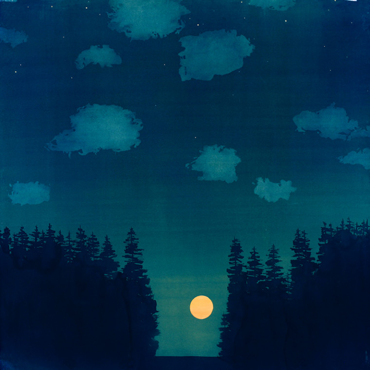 Casey Roberts – Cyanotype Paintings