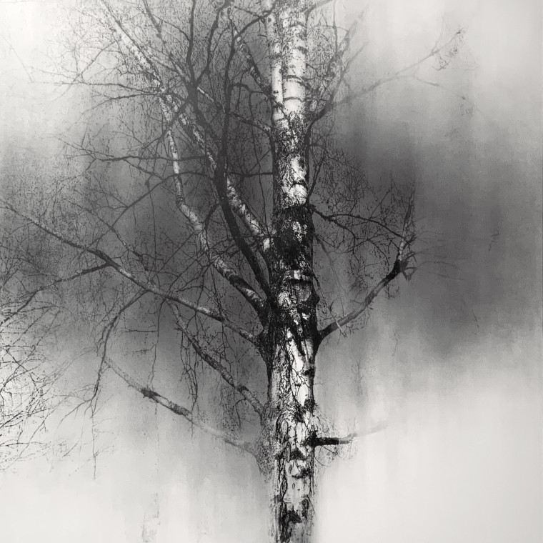 Yuichiro Sato - One Tree, 2021