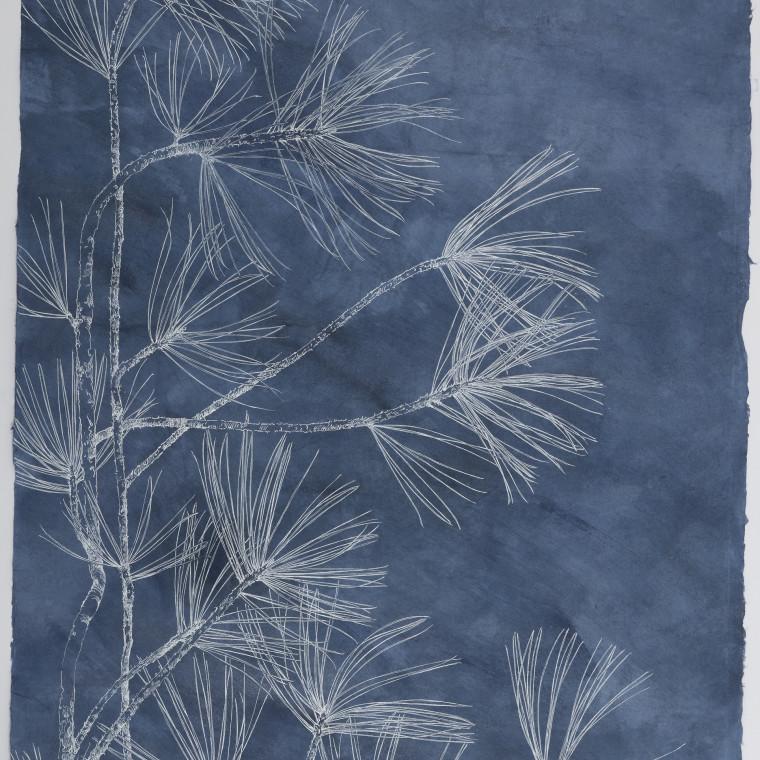 Sarah Horowitz BLUE