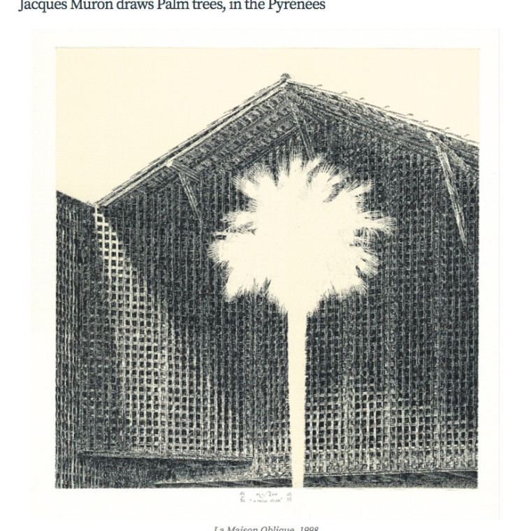 Jacques Muron draws Palm trees, in the Pyrénées