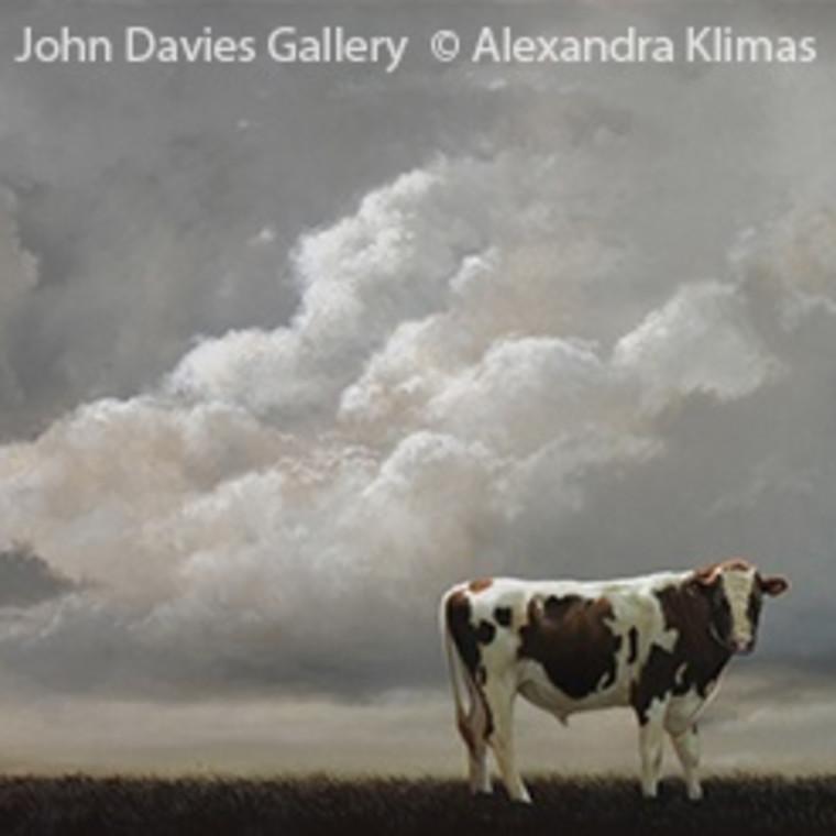 ALEXANDRA KLIMAS - Fine Animal Studies