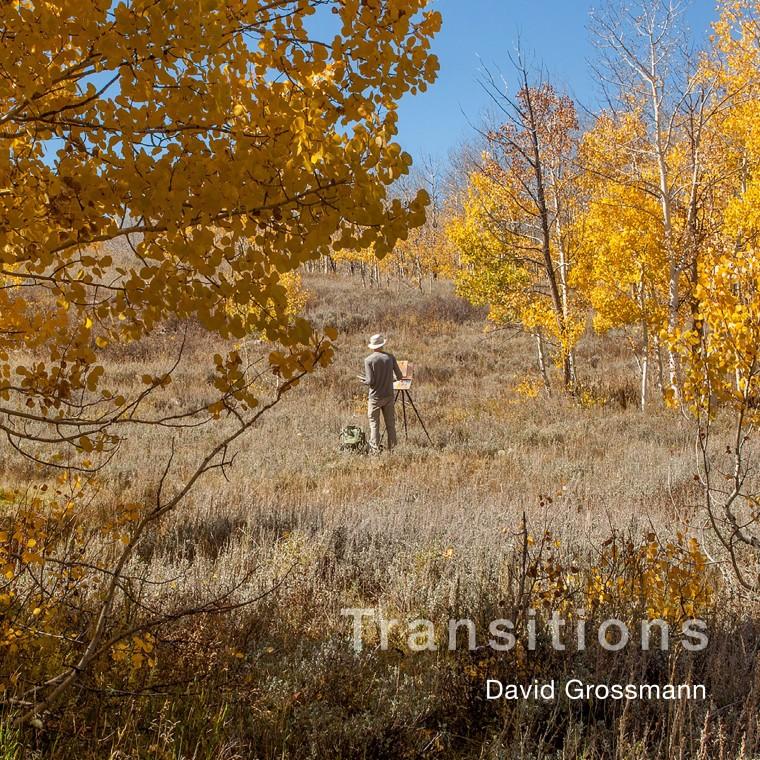 David Grossmann: Transitions