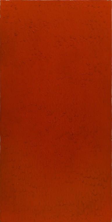 Bernard Aubertin pictorial situation of red