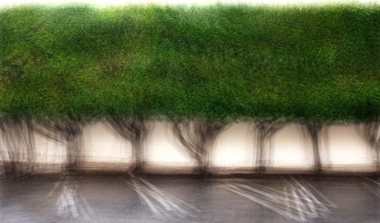 Jacob Gils, Santa Monica #3, 2017