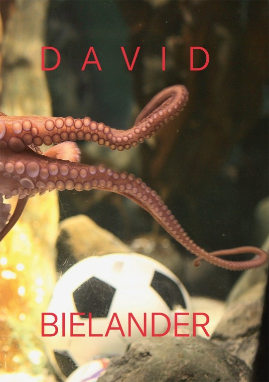 David Bielander