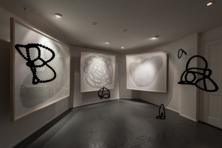 An Irregular Network of Passages, Camilla Emson, Tete de Alencar, G.T. Pellizzi. Exhibition curated by Roya Sach