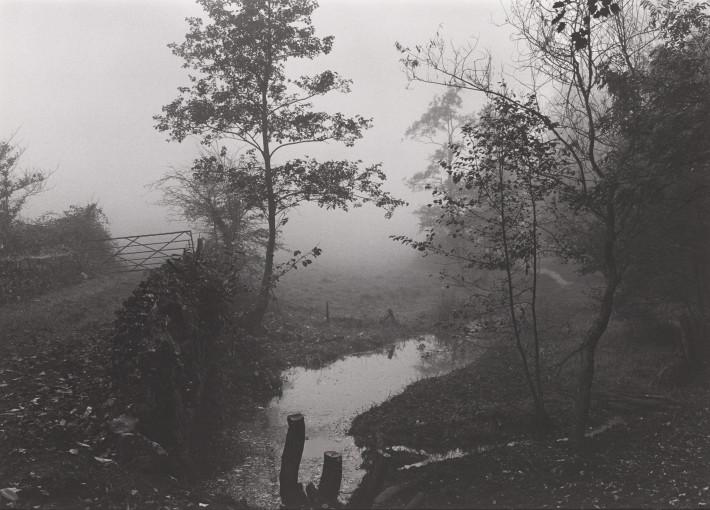 <em>Conservation Area, Landscape </em>, c.1988