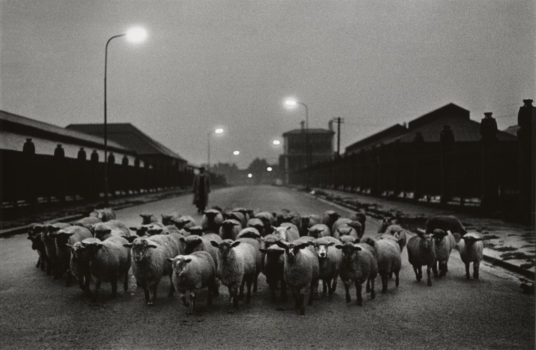 "<span class=""title"">Sheep Going to the Slaughter, Early Morning, Near the Caledonian Road, London<span class=""title_comma"">, </span></span><span class=""year"">1965</span>"
