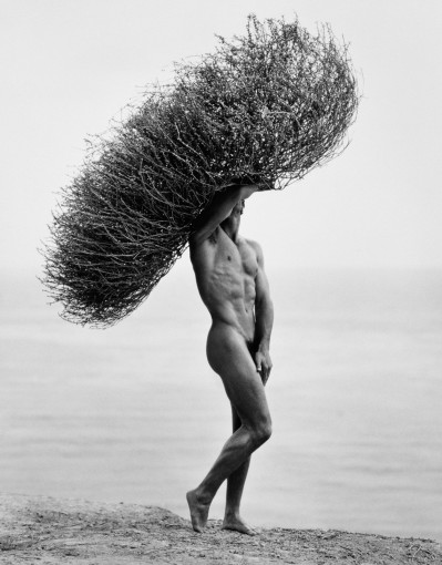 <em>Male Nude with Tumbleweed, Paradise Cove</em>, 1986