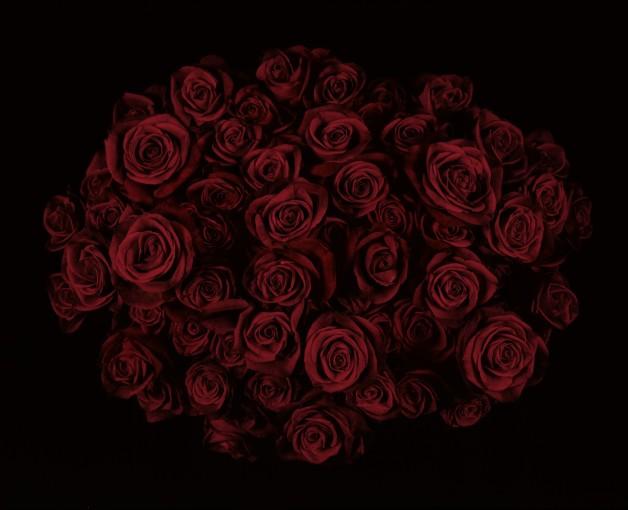 <em>Roses II</em>, 2009
