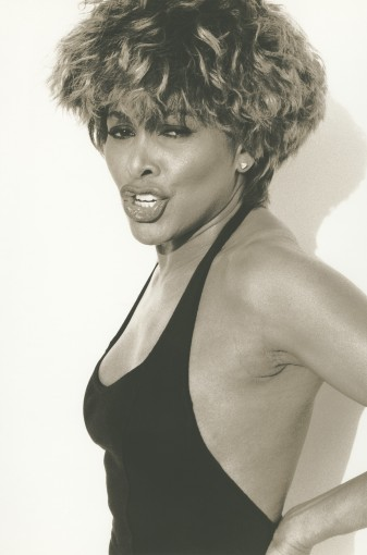 "<span class=""title"">Tina Turner 1, Los Angeles<span class=""title_comma"">, </span></span><span class=""year"">1991</span>"
