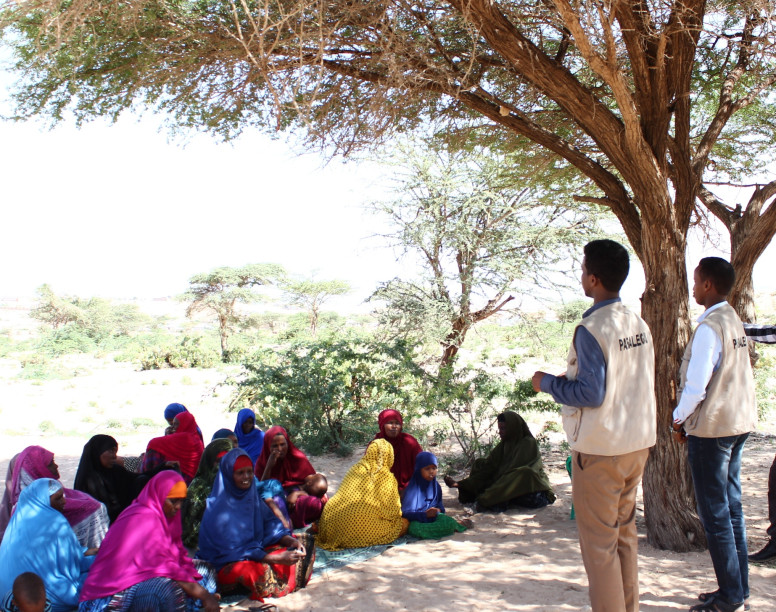 Somaliland Paralegal Project