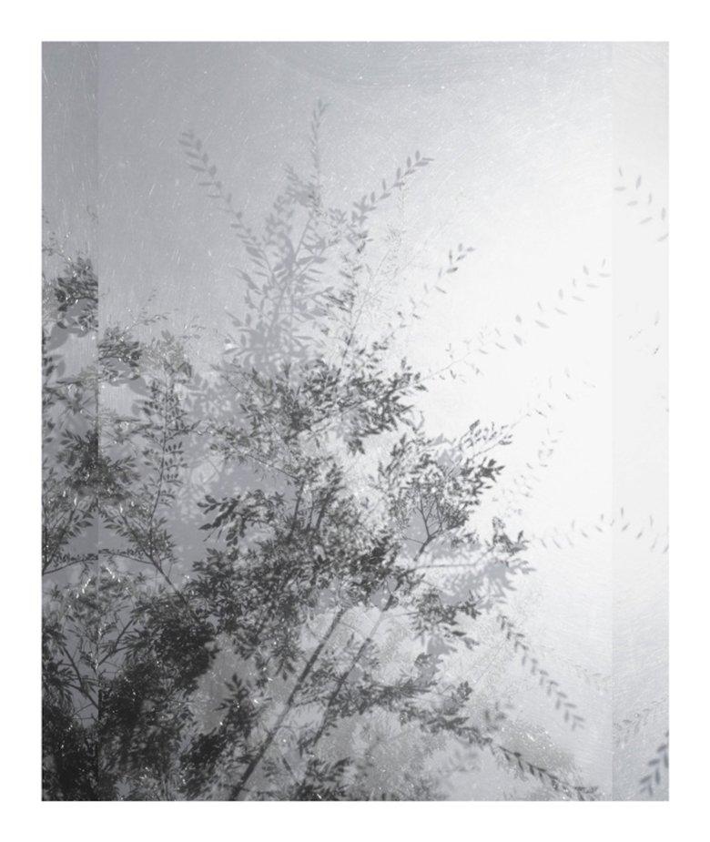 Untitled (Sheats-Goldstein House #14)