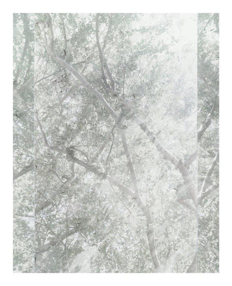 Untitled (Sheats-Goldstein House, #04)