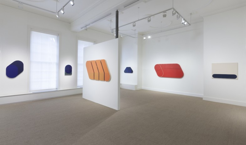 Installation viiew, Rodolfo Aricò: Line of Demarcation.