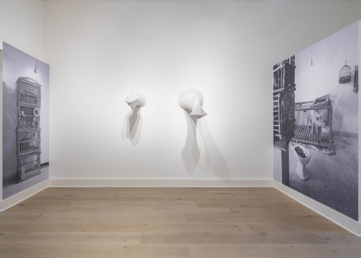 Installation view of Lost in Italy. Photo: Damian Griffiths Photography.