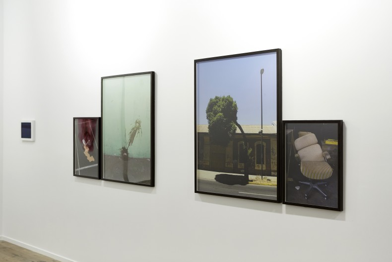 vista da exposição -- galeria nara roesler   new york, 2017