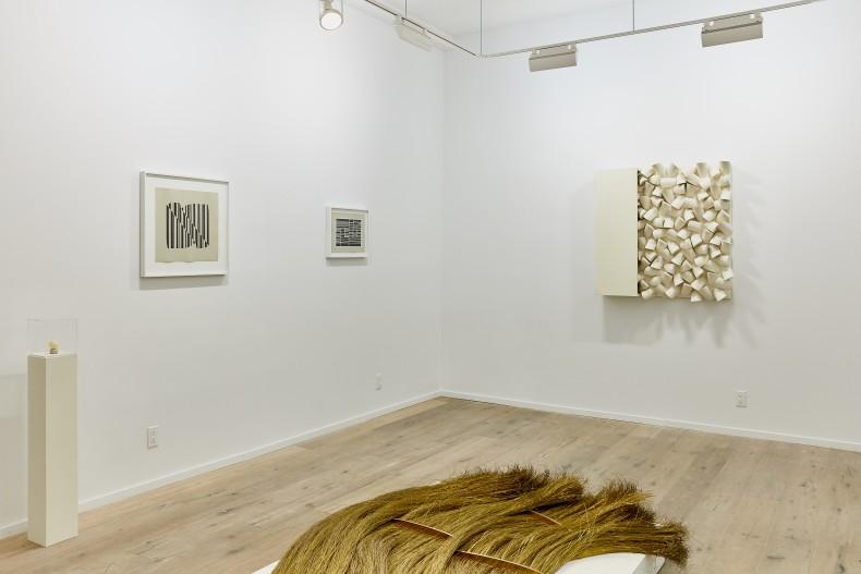 vista da exposição -- galeria nara roesler | new york, 2017 foto will wang © galeria nara roesler